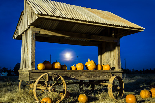 pumpkin pumpkins bishopspumpkinfarm evening moon cart pumpkincart pumpkinpatch patch harvest halloween october sunset grimeshome davidgrimesphotography davidgrimesphotographer grimeshomephotography