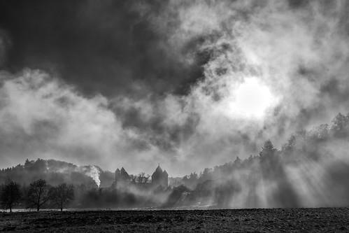 deutschland rheinlandpfalz marialaach nebel schwarzweiss