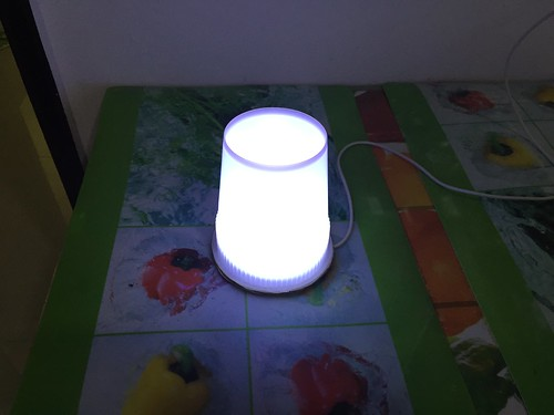 One Watt LED Night Light | by szehau