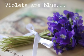 Violet Bouquet | by A Storybook Life