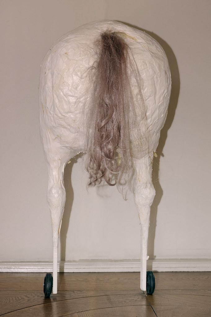 Pferde arsch