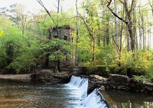 trees atlanta green tower water leaves creek canon spring april emory outstandingromanianphotographers loolwaterpark