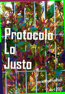 """Protocolo Lo Justo"" 