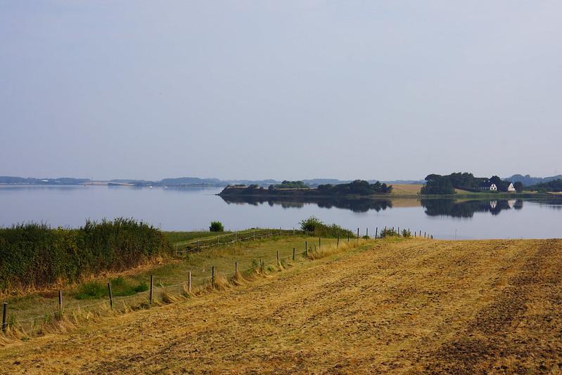 Kaedeby-Haver-2014-07-27 (5)