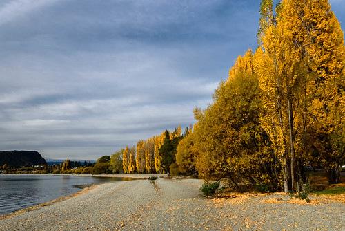 autumn trees newzealand sky mountains water leaves clouds view stones scene autumncolours southisland centralotago wanaka lakewanaka tripdownsouth