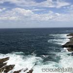 Viajefilos en Australia. Kangaroo 39