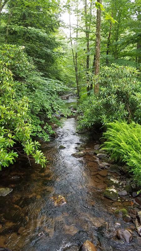 Shades Creek
