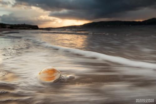 sunset seascape scotland tide shell inverness fortgeorge kingcreosote scottishhighlands favsong
