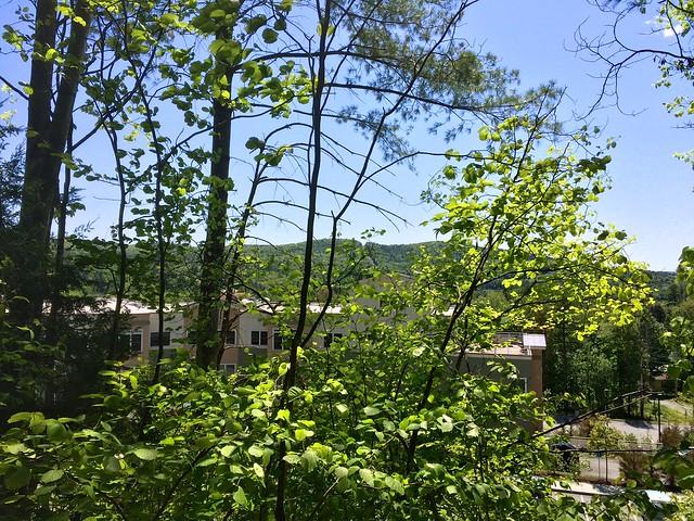 lebanon hiking newhampshire starrhill