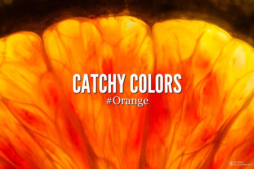 Catchy colors : Orange