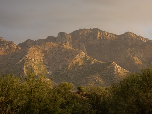 Catalina State Park - 2