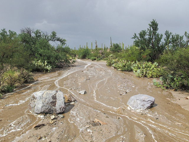 A dope view of a flash flood in a desert wash.