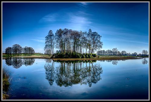 tree water work reflections naked nude landscape scotland topless loch hdr falkirk larbert larbertloch