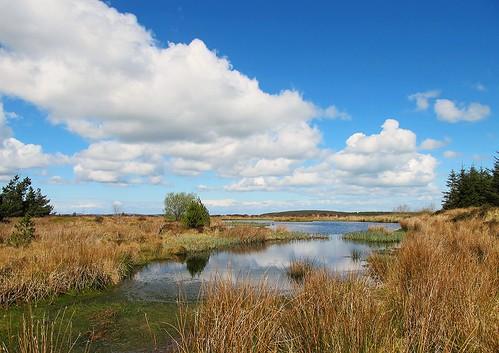 ireland irish lake clouds reflections landscape scenery bluesky grasses limerick inexplore canong11 loughgay loughghé