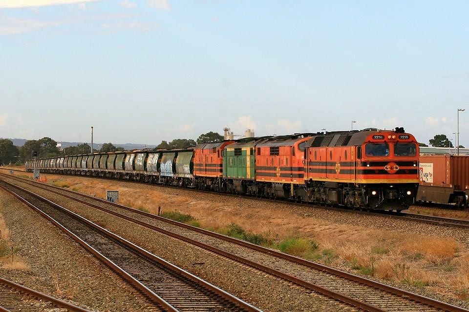 3142S Grain ex Loxton 2210, GM43, GM40 & 703 Kilburn by Trackside Photography Australia