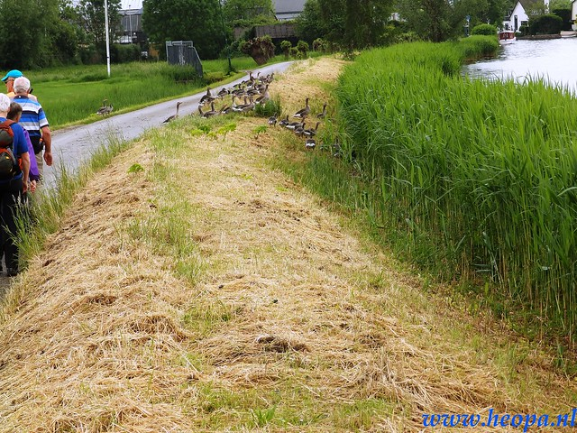 2016-05-25        s'Graveland       25 Km (151)