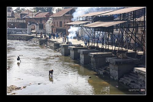 nepal canon river temple death smoke sigma funeral soul kathmandu 18200 pyre cremation pashupatinath brane alamond bagmati 40d zalar