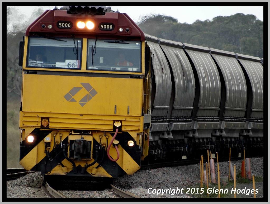 Coalie at Lochinvar by glenn5108