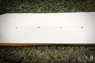 Leater Belt Masterclass   by Kaminskiy