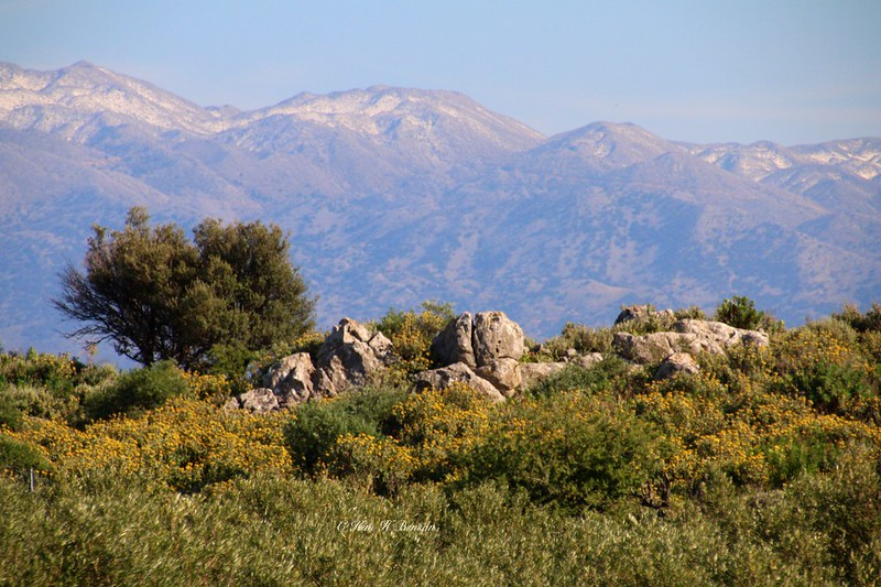 Cretan rocks echoing the Lefka Ori peaks