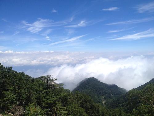 鳳凰山 地蔵岳から雲海   by ichitakabridge