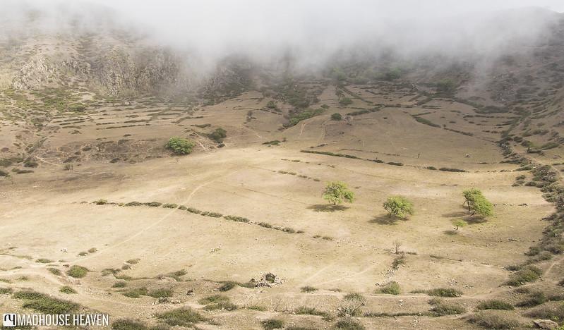 Cape Verde - 0715