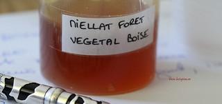Proba de miere la cursul de degustare   by MyBees.ro