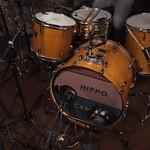 Thu, 16/04/2015 - 9:59am - Hippo Campus Live in Studio A, 4.16.2015 Photo by: Michael Shemenski