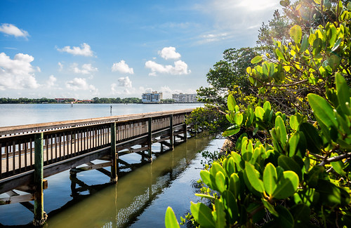 houses water landscape outdoors photography bay pier florida shoreline walkway condos waterside