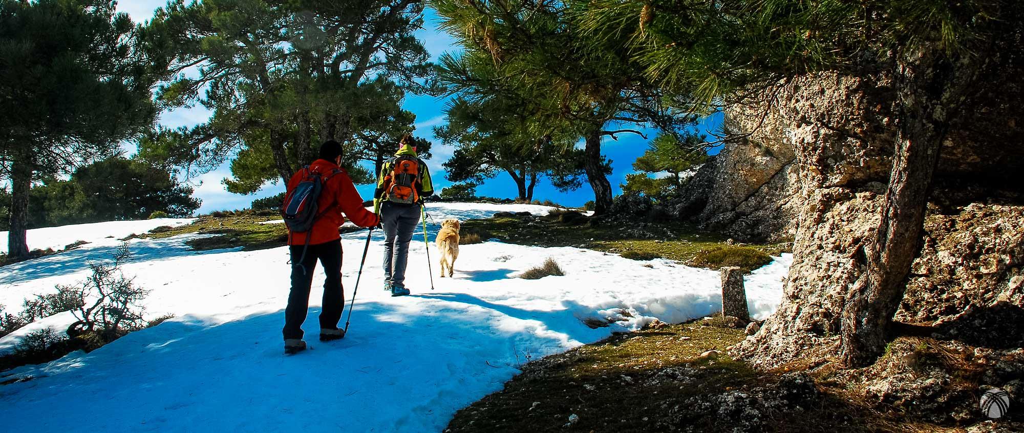 En la zona de cumbres. Puede apreciarse lo dura que está la nieve