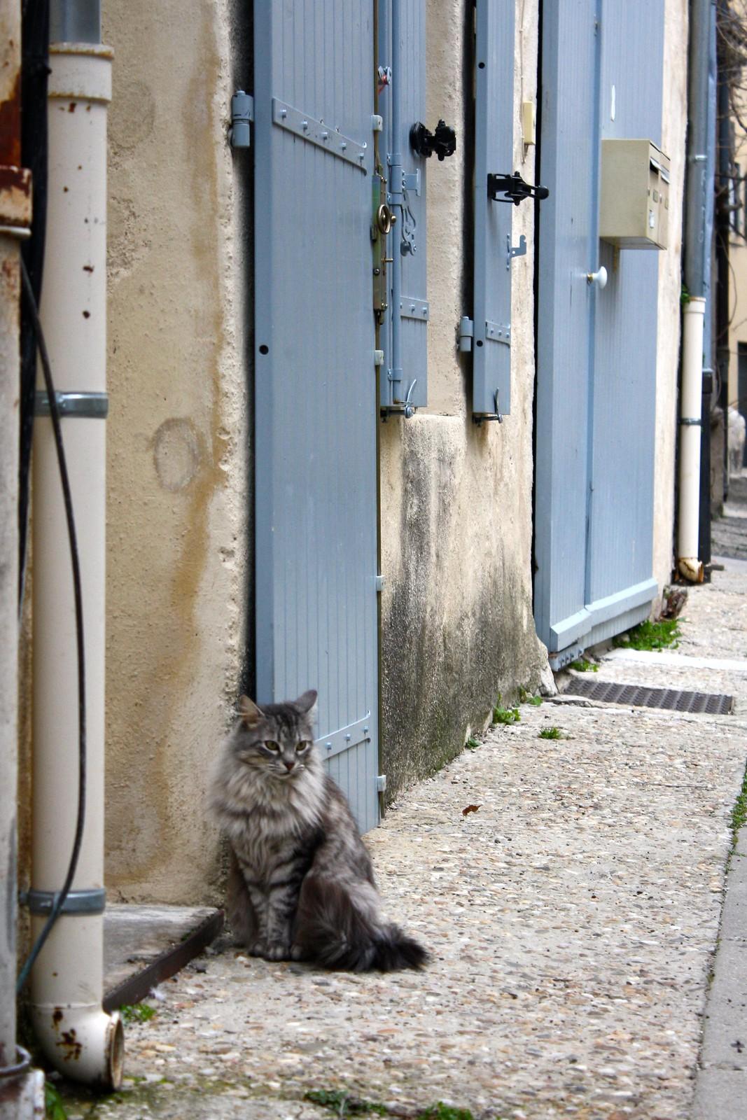 Villeneuve-lès-Avignon, France