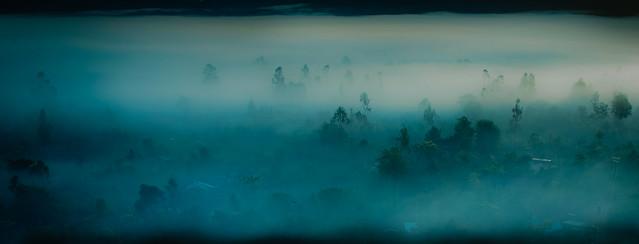 Colombian fog