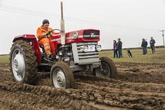 20140405 Vintage Tractor Run 401