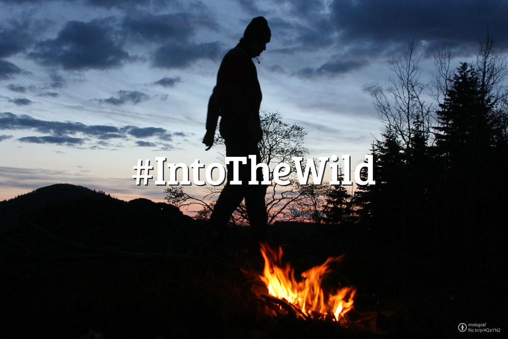 Flickr Friday: #IntoTheWild