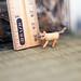 Miniature wooden jointed kitten by MonkEyGstudio