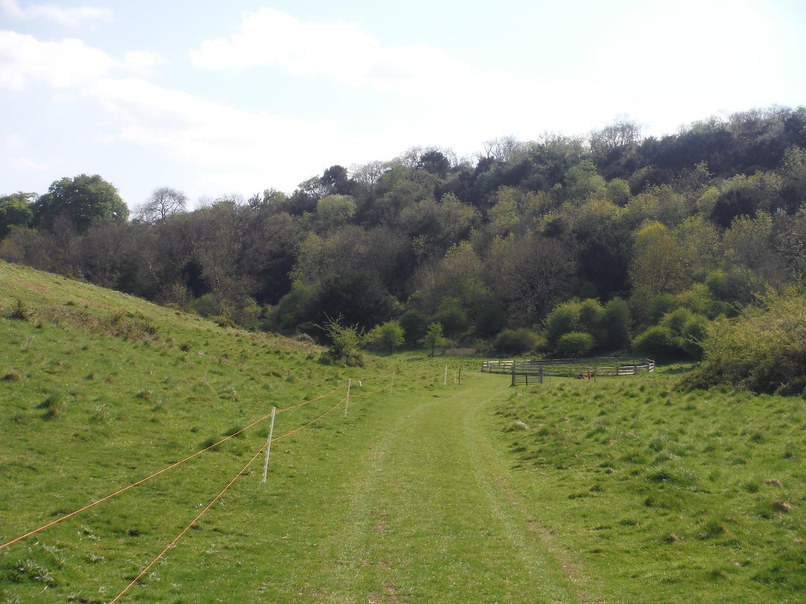 Narrow End of Bramshott Bottom SWC Walk Rowlands Castle Circular - Extension