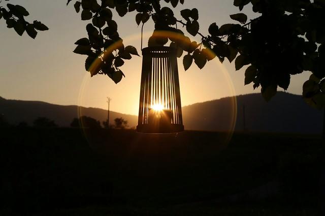 Il sole in gabbia
