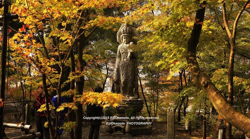 Eikando-Zenrinji-no12
