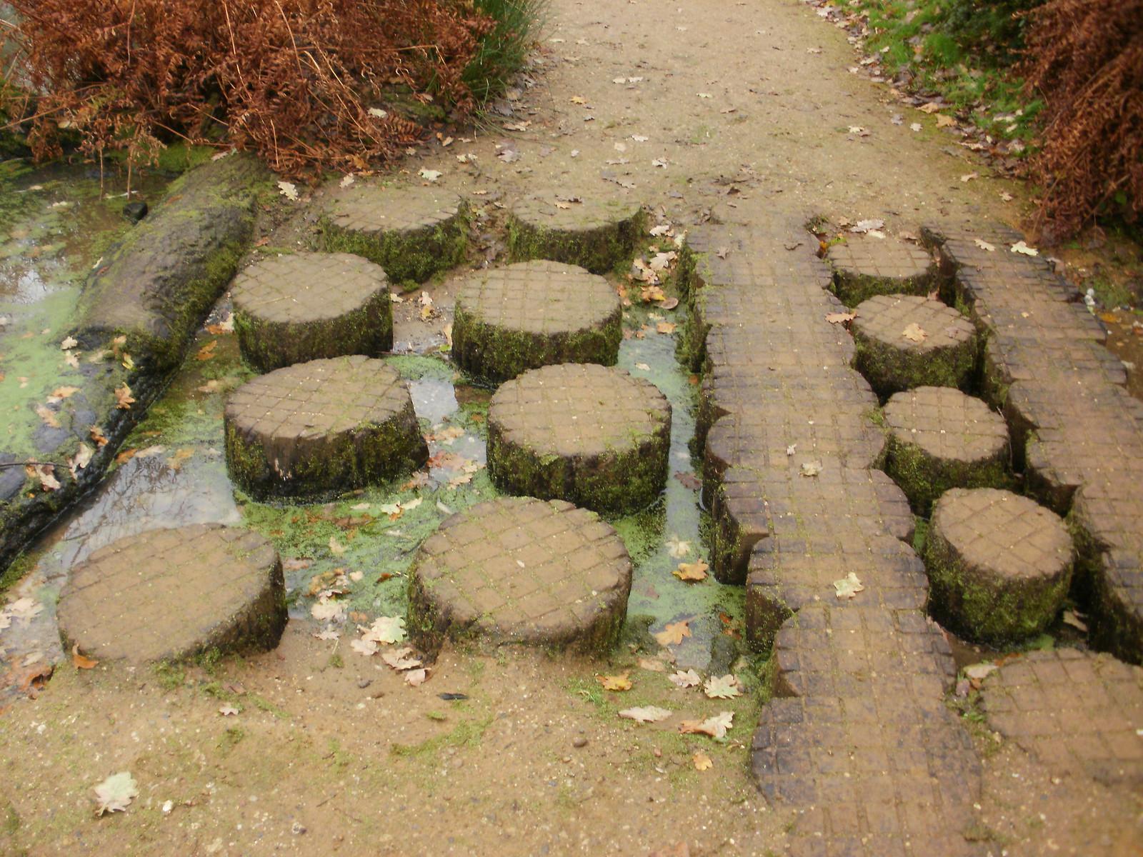 Wooden stepping stones OLYMPUS DIGITAL CAMERA