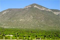 Carretera San Luis a Matehuala - SLP México 150330 111351 04252 HX50V