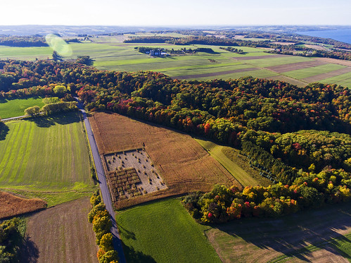 tgif friday harvest life fall autumn aerial aerialphotography drone drones 2016 beautiful cny fingerlakes