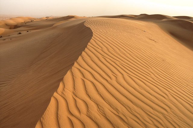 Jelly sand - Oman