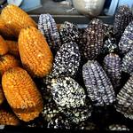 Peruvian maize