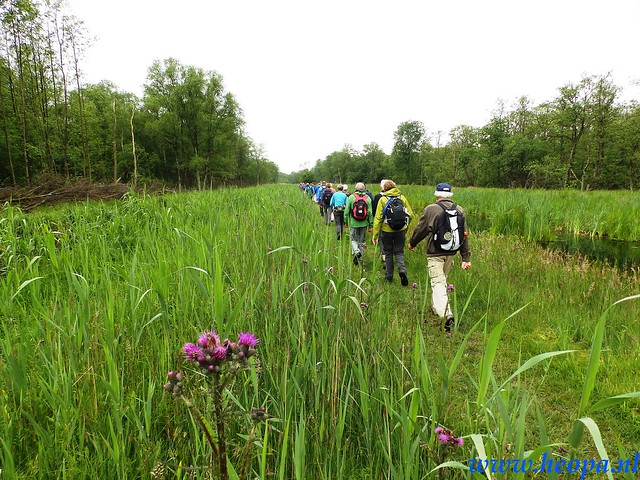 2016-05-25        s'Graveland       25 Km (23)