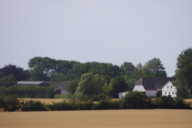 Kaedeby-Haver-2014-07-24 (28)