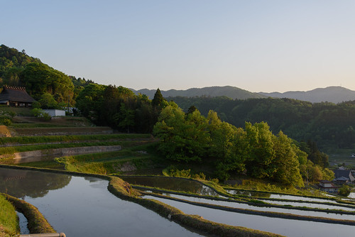 field japan architecture sunrise 建築物 日の出 田園 古民家 棚田 大阪府 豊能郡