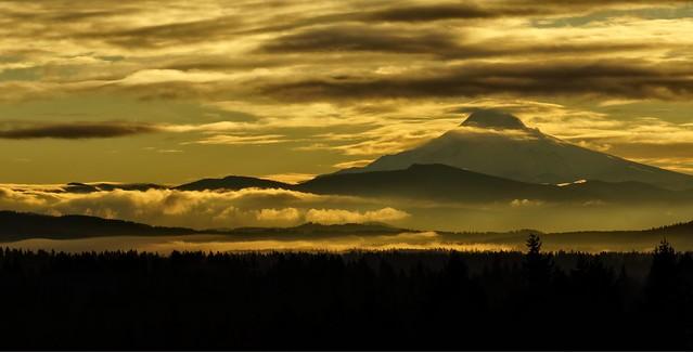 Foggy Sunrise ~ Flickr Explore