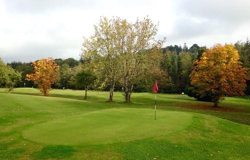 autumn trees ireland irish colour leaves golf landscape outdoor cork scenic course newmarket pitchandputt htmt iphone5 2015onephotoeachday jamesokeeffeinstitute