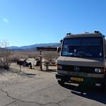Borrego Palm Canyon Campground - campsite