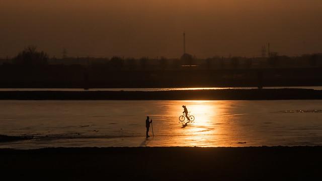 Uiterwaarden IJssel bij Zwolle
